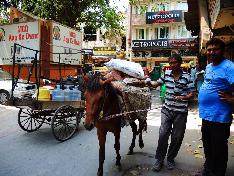 Страхи путешествовать, инструкция по Индии, вопросы по Индии